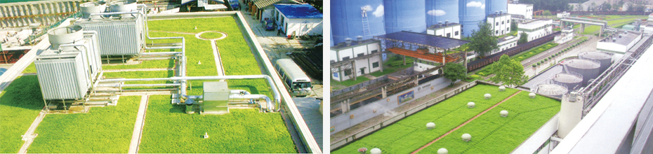 屋顶绿化案例